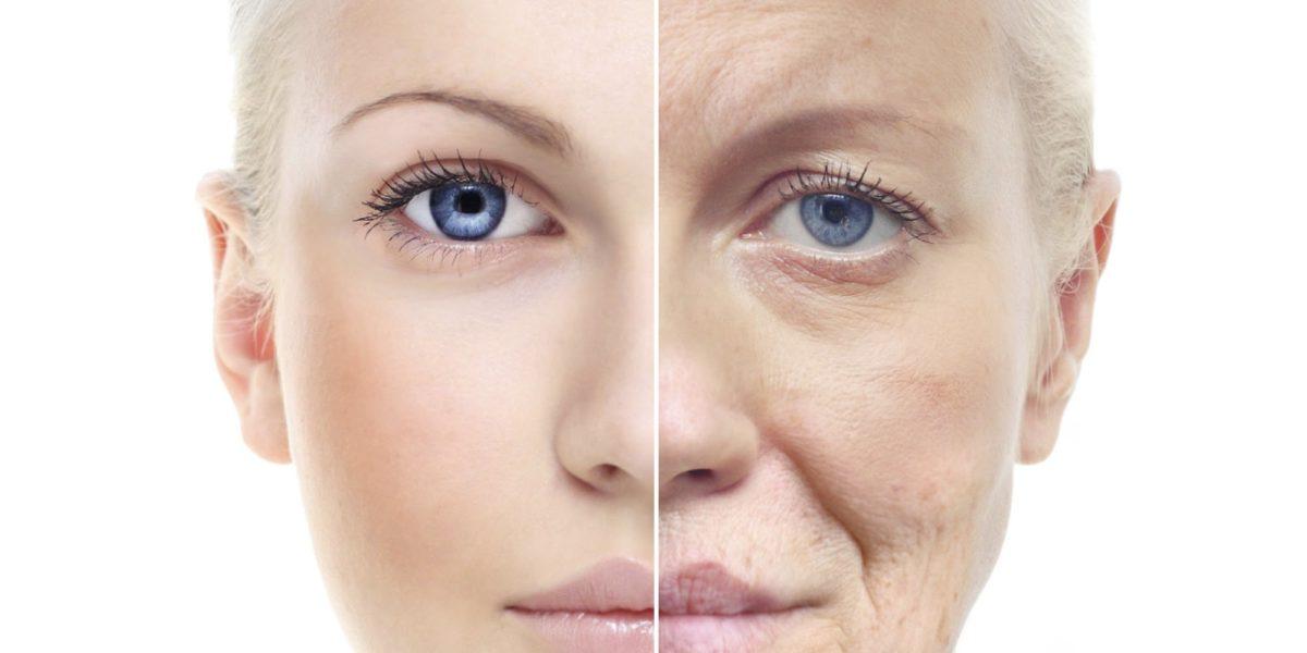 aging_reversal