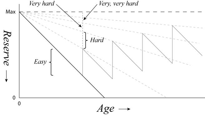 """La """"velocità di fuga della longevità"""" è il semplice ma fondamentale principio in base al quale più si invecchia più i problemi legati all'invecchiamento diventano di difficile soluzione."""