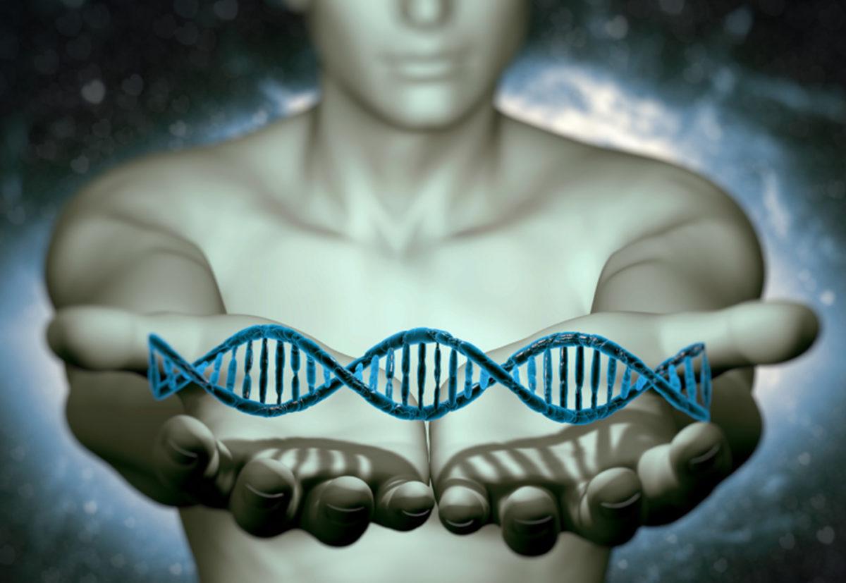 hype_genetica